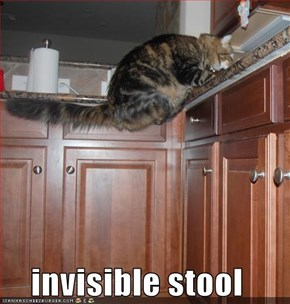 invisible stool