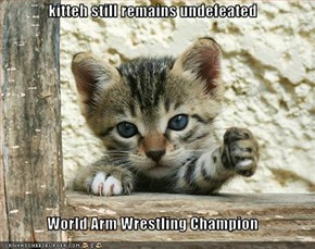 kitteh still remains undefeated  World Arm Wrestling Champion