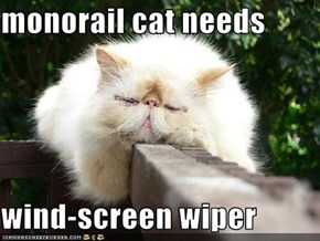 monorail cat needs   wind-screen wiper