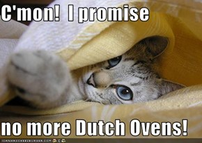 C'mon!  I promise  no more Dutch Ovens!