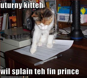 uturny kitteh  wil splain teh fin prince