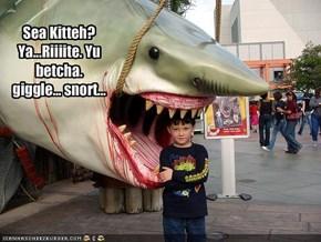 Sea Kitteh? Ya...Riiiite. Yu betcha.giggle... snort...
