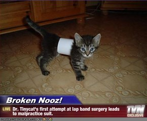 Broken Nooz! - Dr. Tinycat's first attempt at lap band surgery leads to malpractice suit.