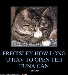 PRECISLEY HOW LONG U HAV TO OPEN TEH TUNA CAN