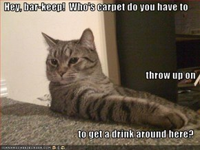 Hey, bar-keep!  Who's carpet do you have to throw up on  to get a drink around here?