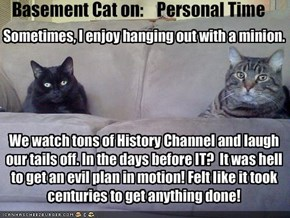 Basement Cat on:    Personal Time