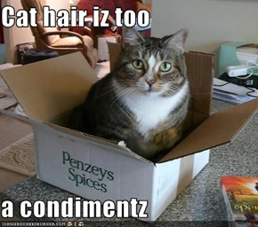 Cat hair iz too  a condimentz