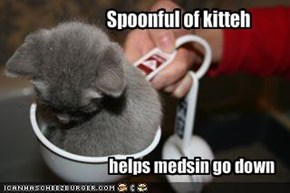 Spoonful of kitteh