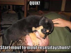 QUIK!  Start mouf to mouf resesitayshuns!
