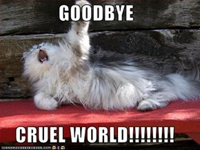 GOODBYE  CRUEL WORLD!!!!!!!!