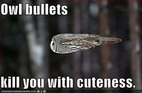 Owl bullets  kill you with cuteness.