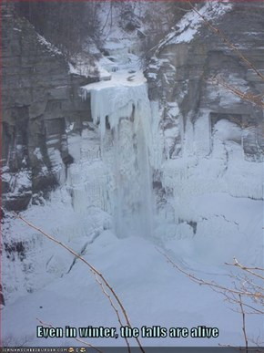 Even in winter, the falls are alive