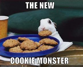 THE NEW  COOKIE MONSTER