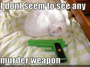 I dont seem to see any  murder weapon