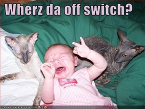 Wherz da off switch?