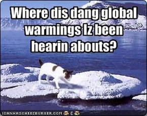 Where dis dang global warmings Iz been hearin abouts?