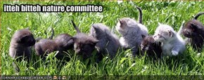 itteh bitteh nature committee