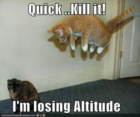Quick ..Kill it!  I'm losing Altitude
