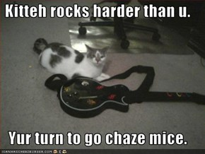 Kitteh rocks harder than u.  Yur turn to go chaze mice.