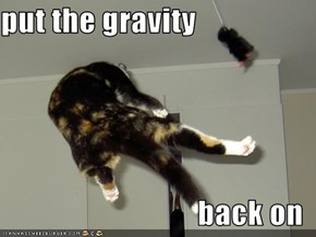 put the gravity  back on