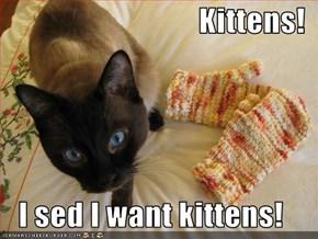 Kittens!  I sed I want kittens!