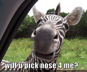 will u pick nose 4 me?