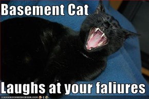 Basement Cat  Laughs at your faliures
