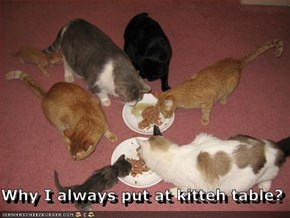 Why I always put at kitteh table?