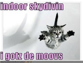 indoor skydivin  i gotz de moovs