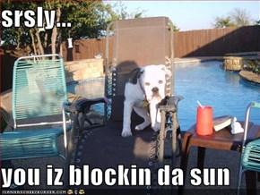 srsly...  you iz blockin da sun