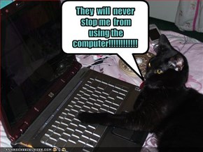 They  will  never  stop me  from  using the computer!!!!!!!!!!!!