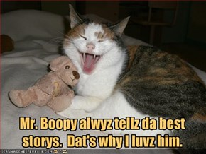 Mr. Boopy alwyz tellz da best storys.  Dat's why I luvz him.