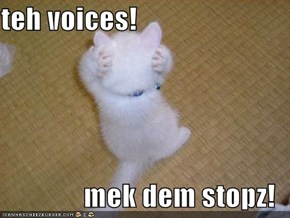 teh voices!  mek dem stopz!