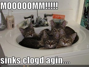 MOOOOOMM!!!!!  sinks clogd agin....