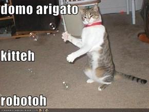 domo arigato kitteh robotoh