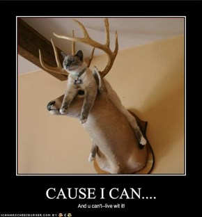 CAUSE I CAN....