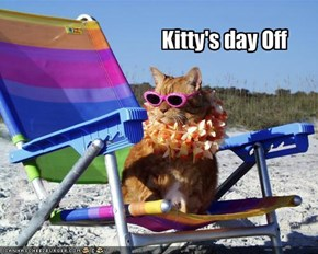Kitty's day Off