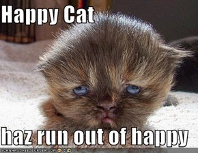 Happy Cat  haz run out of happy