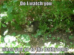 Do I watch you  when you go to the bathroom?