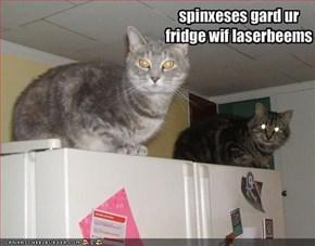 spinxeses gard ur fridge wif laserbeems