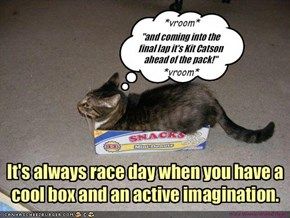 It's always race day when you have a cool box and an active imagination.
