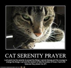 CAT SERENITY PRAYER
