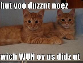 but yoo duzznt noez  wich WUN ov us didz ut