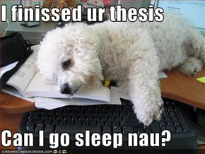 I finissed ur thesis  Can I go sleep nau?
