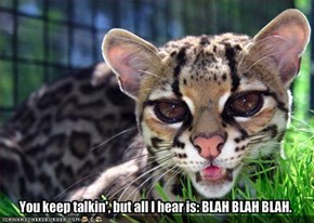 You keep talkin', but all I hear is: BLAH BLAH BLAH.
