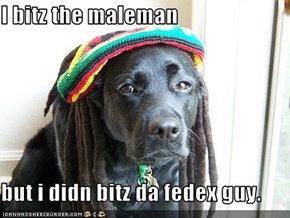 I bitz the maleman  but i didn bitz da fedex guy.