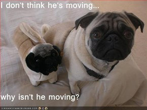 I don't think he's moving...  why isn't he moving?