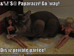 &%!*$@ Paparazzi! Go 'way!  Dis iz private partee!