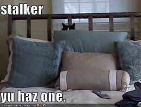 stalker  yu haz one.
