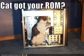 Cat got your ROM?